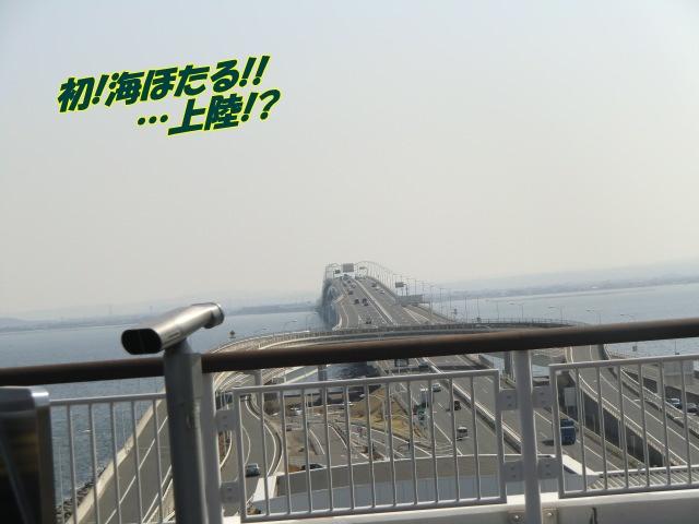 2011_0226_114921-CIMG4028.jpg