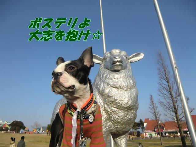 2011_0226_160854-CIMG4127.jpg