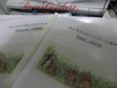 2011_0304_202729-CIMG4346.jpg