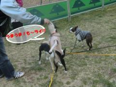 2011_0327_173025-CIMG4531.jpg