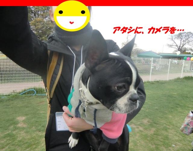 2011_0403_160637-CIMG4564.jpg