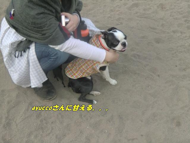 2011_0406_173606-CIMG4592.jpg