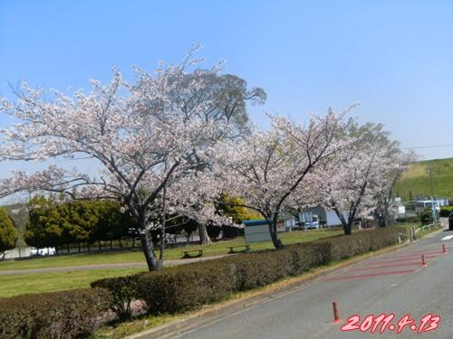 2011_0413_110930-CIMG4693.jpg