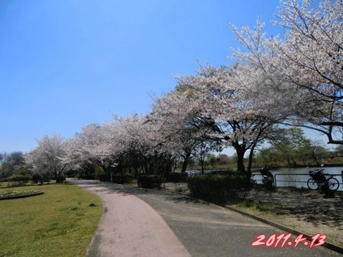 2011_0413_121012-CIMG4712.jpg