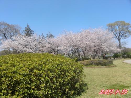 2011_0413_121058-CIMG4713.jpg