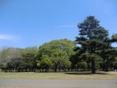 2011_0416_103206-CIMG4733.jpg