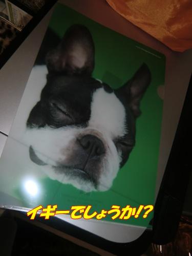 2011_0427_214422-CIMG4832.jpg