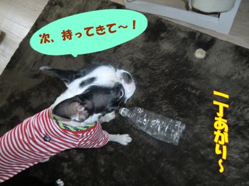 2011_0502_155306-CIMG4947.jpg