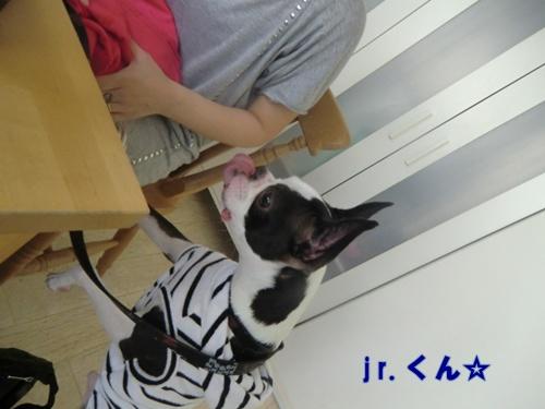 2011_0514_132118-CIMG5104.jpg