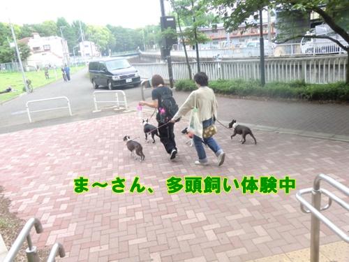2011_0514_150948-CIMG5118.jpg