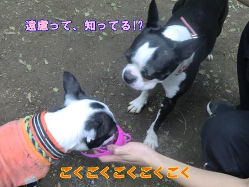 2011_0514_155427-CIMG5134.jpg