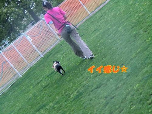2011_0526_145357-CIMG5313.jpg