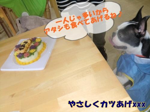 2011_0528_134803-CIMG5335.jpg