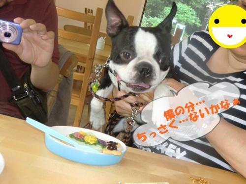 2011_0528_135441-CIMG5336.jpg
