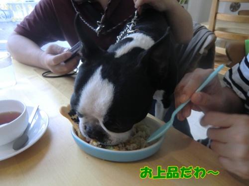 2011_0528_135800-CIMG5344.jpg