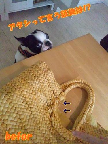 2011_0530_152320-DSC_0115.jpg