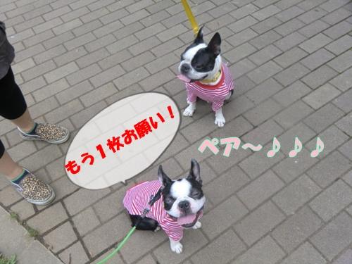 2011_0610_131333-CIMG5480.jpg