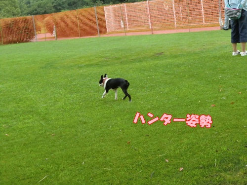 2011_0626_161544-CIMG5610.jpg