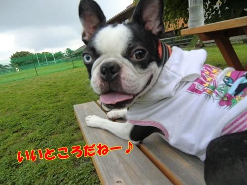 2011_0703_092056-CIMG5711.jpg