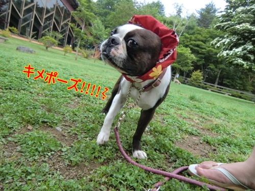 2011_0703_094018-CIMG5716.jpg