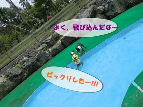 2011_0703_122103-CIMG5747.jpg