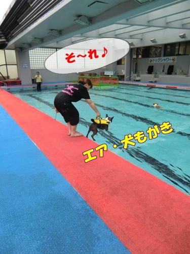 2011_0703_123251-CIMG5754.jpg
