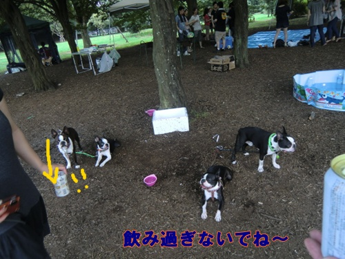 2011_0709_114706-CIMG5859.jpg