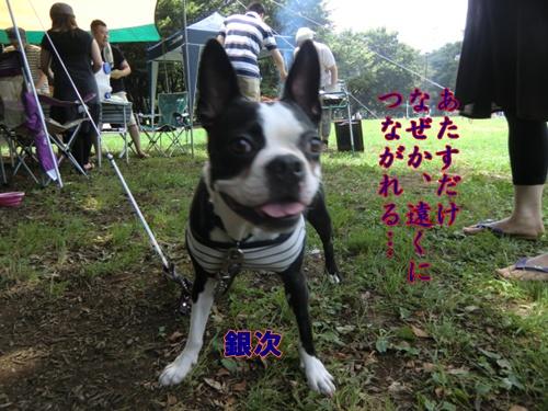 2011_0709_121215-CIMG5864.jpg