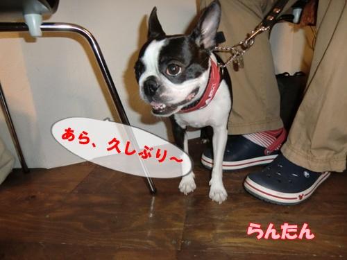 2011_0727_141305-CIMG6023.jpg