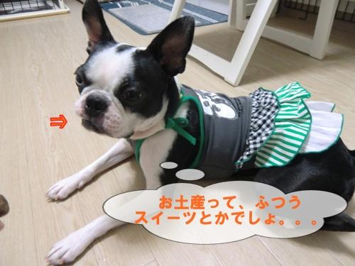 2011_0727_185652-CIMG6045.jpg