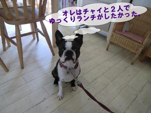 2011_0728_123209-CIMG6065.jpg