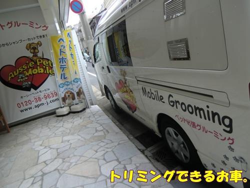 2011_0728_154337-CIMG6084.jpg