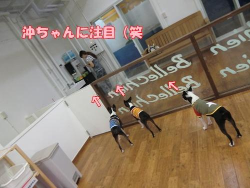 2011_0802_172052-CIMG6108.jpg