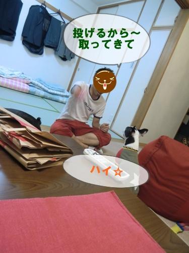 2011_0802_202216-CIMG6124.jpg
