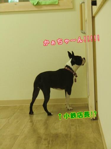 2011_0819_172053-CIMG6396.jpg