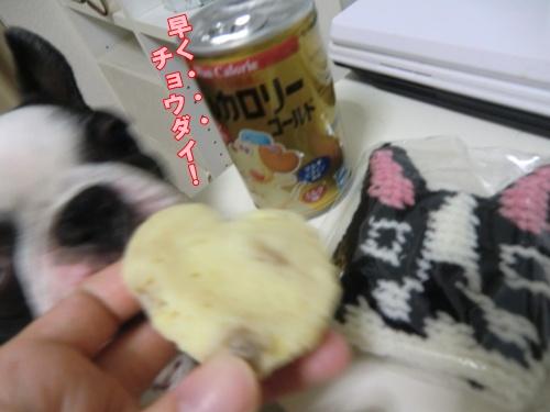 2011_0819_184938-CIMG6400.jpg