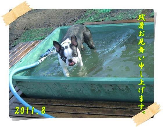 2011_0824_163204-CIMG6431.jpg