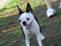 2011_0824_164003-CIMG6437.jpg