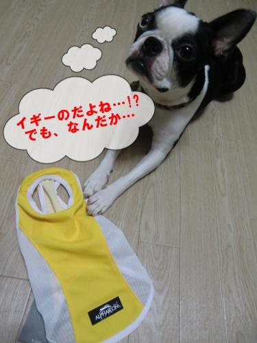 2011_0826_180610-CIMG6458.jpg