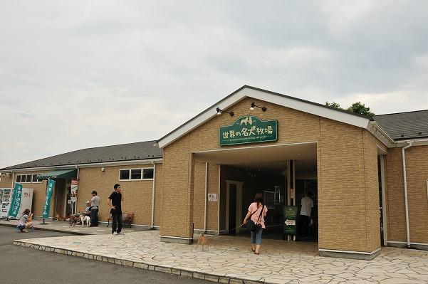 20100627-2 (1)
