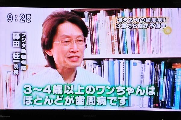 とくダネ!ジーク (1)