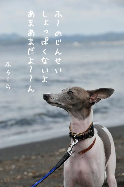 千葉南房総その3 (5)