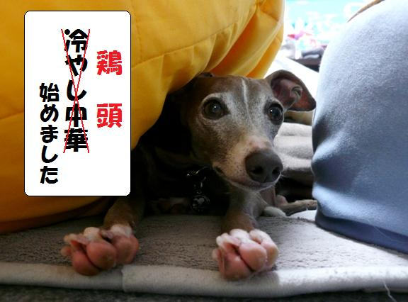 先日「あらびき団」で、冷やし中華始めましたって言うネタを見たもので・・。