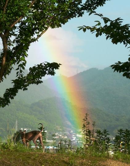 虹を強調するよう、写真の色をいじってみました