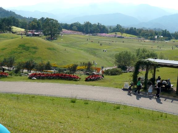 公園の一部