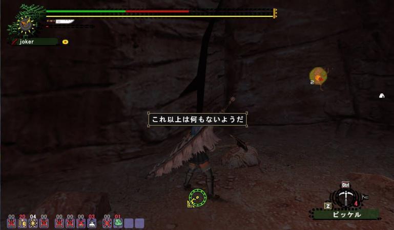 bdcam 2010-05-29 21-05-16-124