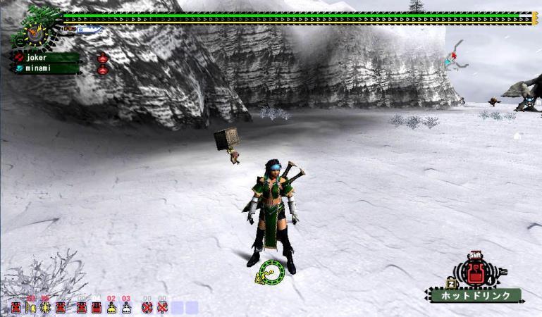 bdcam 2010-07-06 21-05-04-988