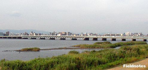 堤防の上から見た海老江干潟