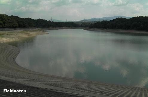 北の本堤防から見た水位が下がった光明池