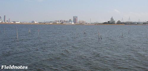 淀川河口付近